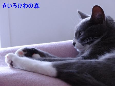 2012aout17_54