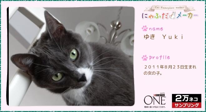 Card20130427071525753